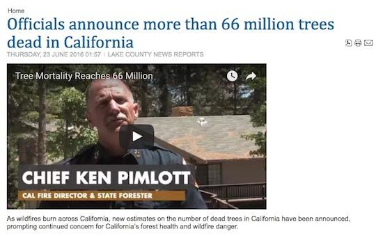 66 Million